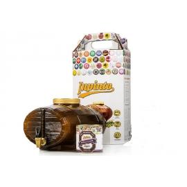 Домашняя мини-пивоварня InPinto Deluxe Kit